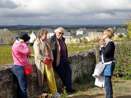 2018 - 06 Château de Brézé (17)