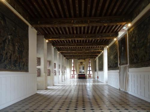 2018 - 21 Château de Brissac (05)